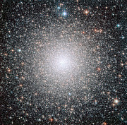The globular cluster NGC 6388, observed by the NASA/ESA  Hubble Space Telescope