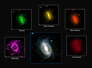 Images de galaxies issues du sondage GAMA