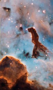 Star cluster Trumpler 14