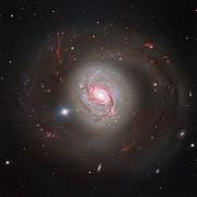 La deslumbrante galaxia Messier 77