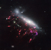 Example of a jellyfish galaxy