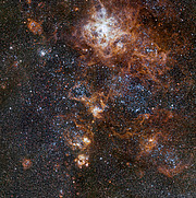 The rich region around the Tarantula Nebula in the Large Magellanic Cloud