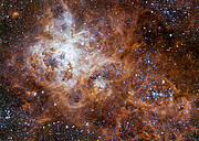 The Tarantula Nebula in the Large Magellanic Cloud