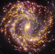 NGC 4303 op verschillende golflengten, zoals waargenomen met VLT en ALMA