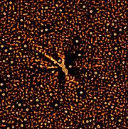 Comet Hale Bopp Dust Jets
