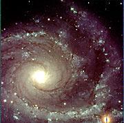 Spiral galaxy NGC 2997