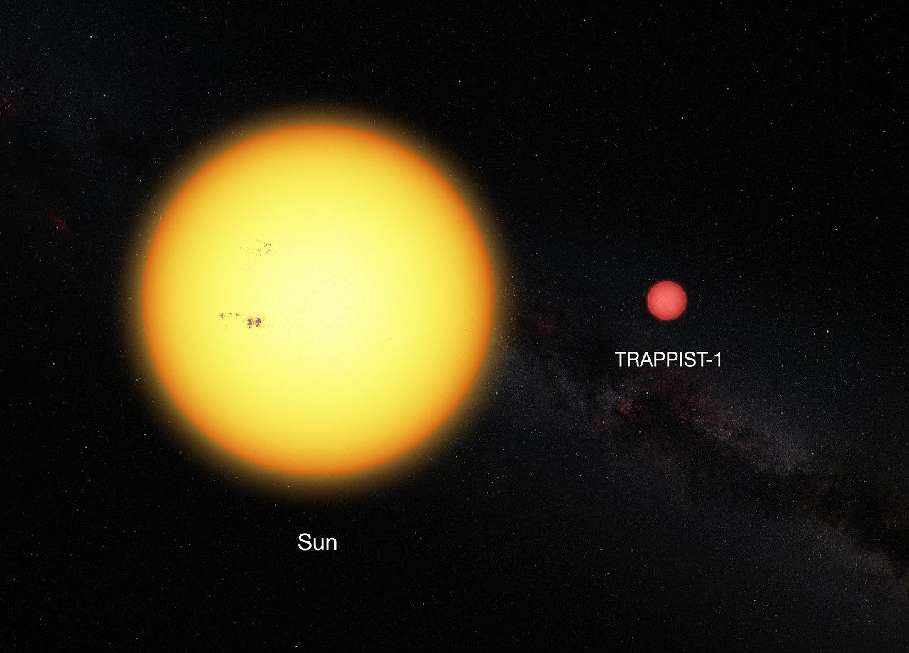 Tarrapist-1 в порівнянні з Сонцем