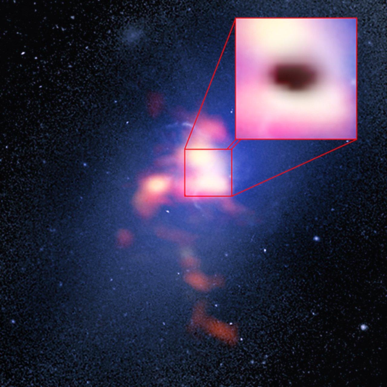 Gasserne i Abell 2597 galaksehoben
