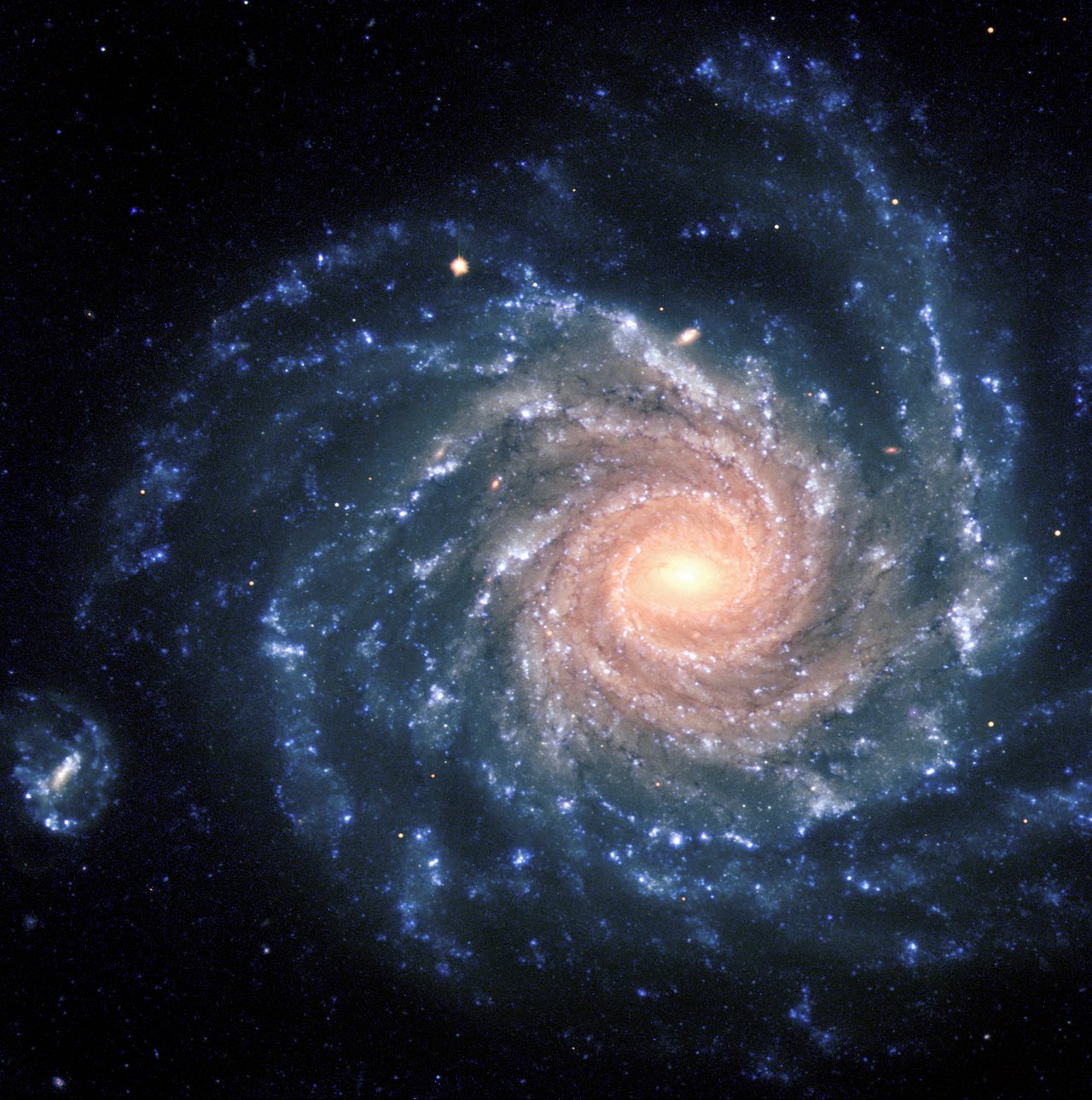 Mounted image 140: Spiral galaxy NGC 1232