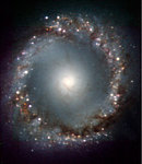The Centre of the Active Galaxy NGC 1097