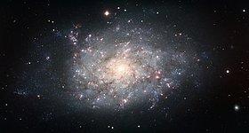 Spiral Galaxy NGC 7793
