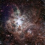 TRAPPIST First Light Image of the Tarantula Nebula