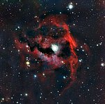 Close-up view of the head of the Seagull Nebula