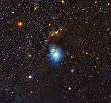 Young star lights up reflection nebula IC 2631