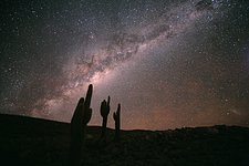 Echinopsis Atacamensis and the Milky Way