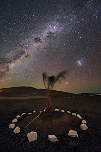 Milky Way above a decorative arrangement