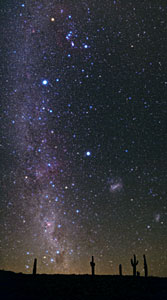 Atacama Night