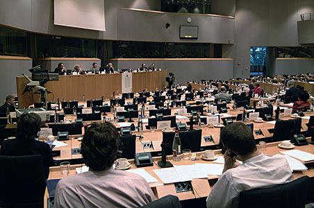 Mini hearing on European Astronomy and Astrophysics