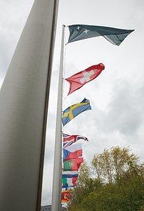 ESO Flags
