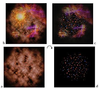 The Supernova Scenario