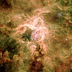 Cosmic Spider: The Tarantula Nebula