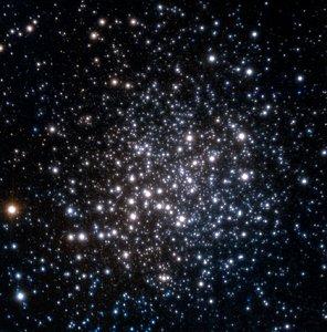 The star cluster Terzan 5