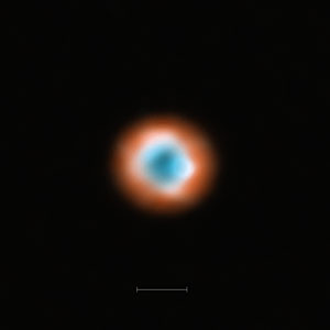 ALMA imaging of the transitional disc DoAr 44