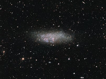The WLM galaxy on the edge of the Local Group
