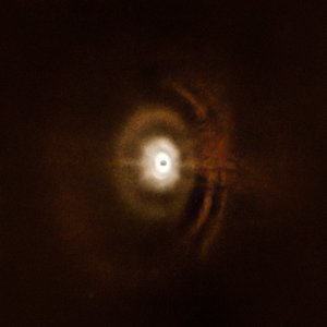 Disc around the star HD 97048