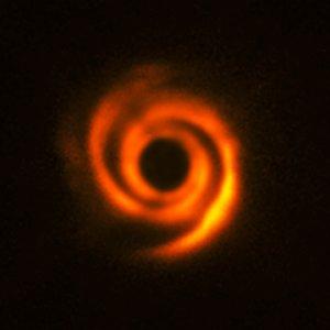 Disc around the star HD 135344B