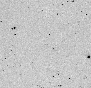 Distant Radio Galaxy MRC0316-257