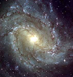 Messier 83 - Central region