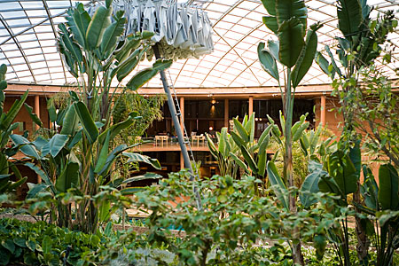 Tropical garden, residencia, Paranal