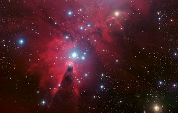 Mounted image 041: NGC 2264 and the Christmas Tree cluster