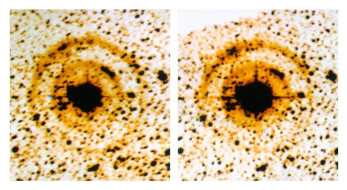 Light echoes around SN 1987A