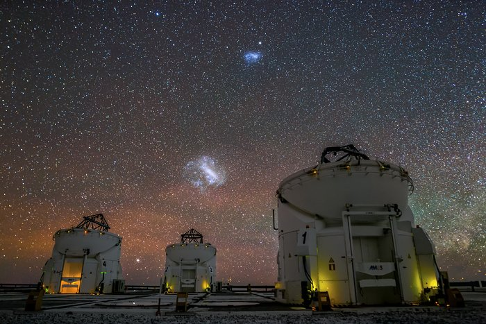 The Magellanic Clouds