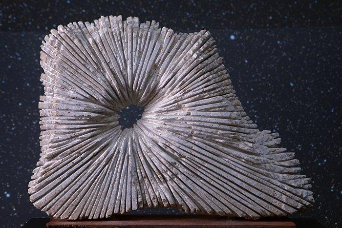 Sculpture & stars
