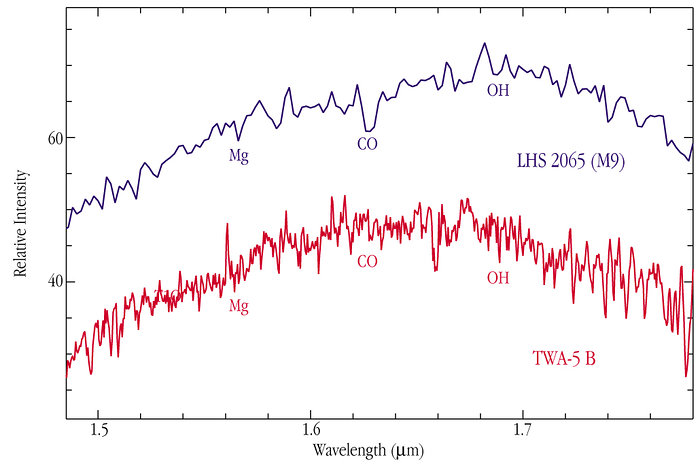Infrared Spectrum of Brown Dwarf TWA-5B