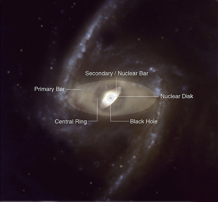 Structural Components of a Double-Barred Spiral Galaxy