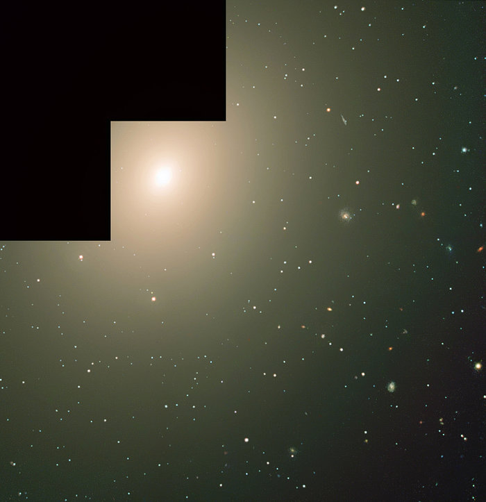 The elliptical galaxy NGC 4365