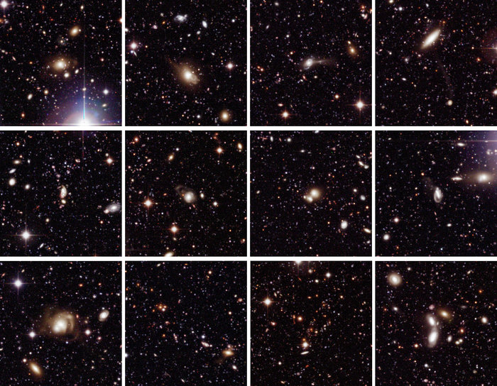 Selected Galaxies in Chandra Deep Field South