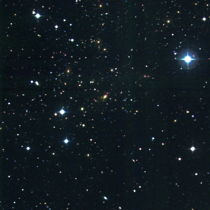 Cluster of galaxies RXCJ1131.9-1955