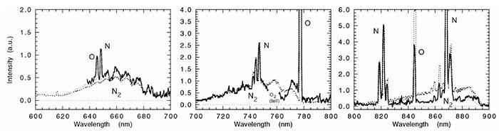 Details of the meteor spectrum (FORS1/VLT)