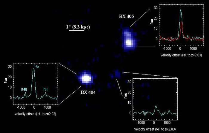 SINFONI observations of the young starforming galaxies BX 404/405