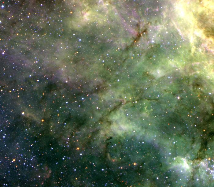 Filaments in the Tarantula Nebula