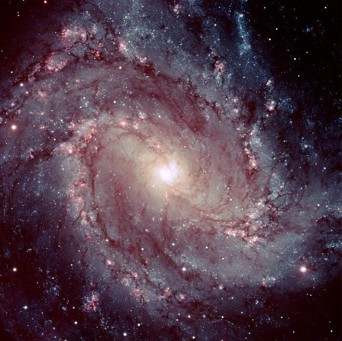 Spiral Galaxy Messier 83
