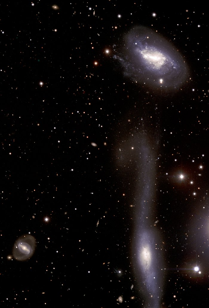 The Hooked Galaxy and its Companion