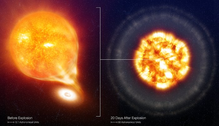 SN 2006X, before and after the Type Ia Supernova explosion (artist's impression)