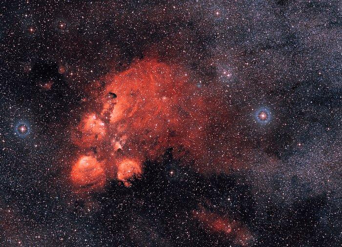 Alrededor de la Nebulosa Pata de Gato