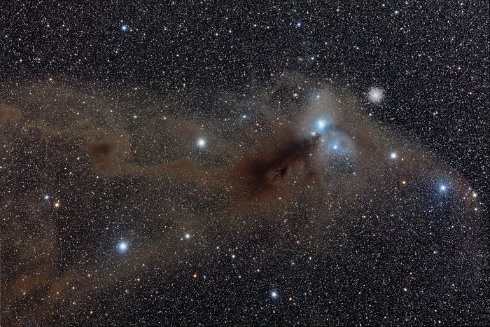 Wide field view of the R Coronae Australis region